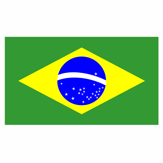 1f4fb2c669bd8 Bandeira Brasil - Pura Arte Adesivos