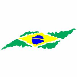 Bandeira Brasil Estilizada