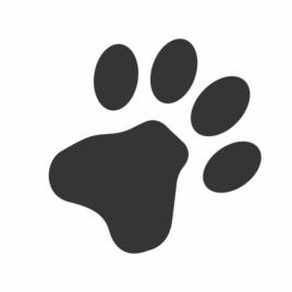 Patinha de Animais Domésticos
