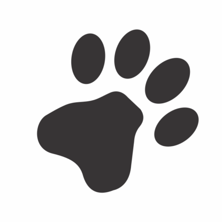 adesivo personalizado-patinha preta-para carro-pet shopping-vitrines-gato-cachorro-animais-pura arte adesivos